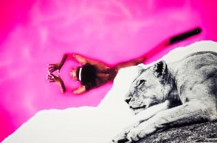 Filip Cederholm. Pink Lioness, 2016. 100 × 140 cm, edition 1. 70 × 100 cm, edition 3. 40 × 60 cm, editions 5. 30 × 42 cm, edition 10.